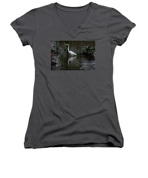 Wading Great Egret Women's V-Neck T-Shirt (Junior Cut) by James David Phenicie