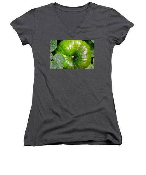 Six More Weeks Women's V-Neck T-Shirt