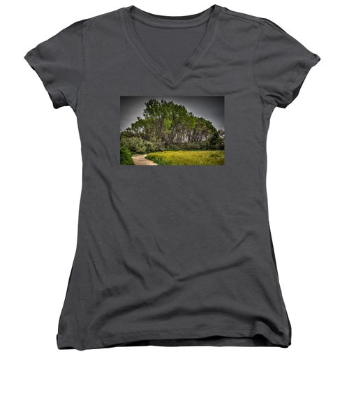 Walk In The Meadow In Spring Women's V-Neck (Athletic Fit)