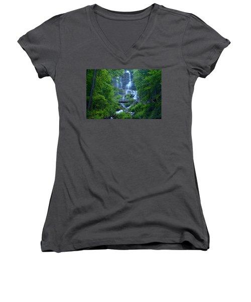 Walk In The Park Women's V-Neck T-Shirt