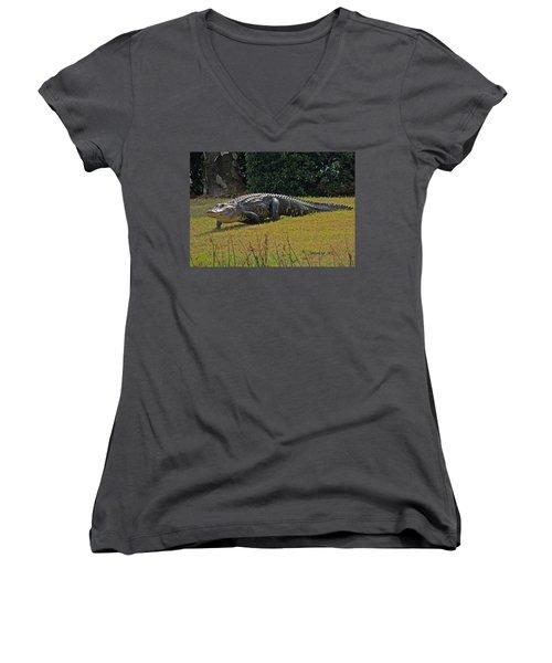 Walking Appetite Women's V-Neck T-Shirt