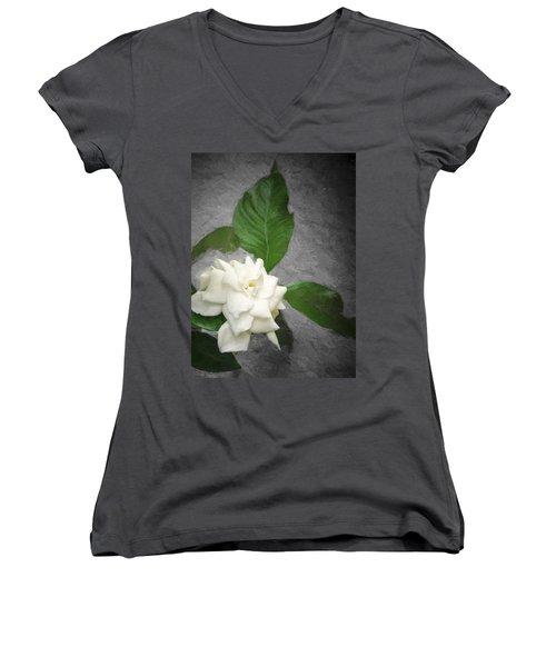 Wall Flower Women's V-Neck T-Shirt (Junior Cut) by Carolyn Marshall