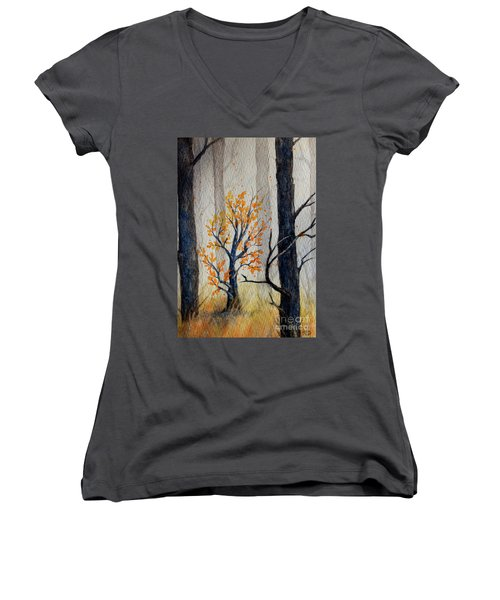 Warmth In Winter Women's V-Neck (Athletic Fit)