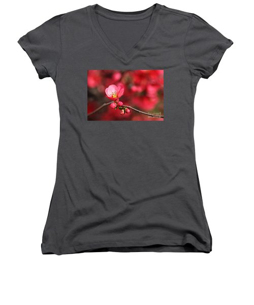 Warmth Of Flowering Quince Women's V-Neck