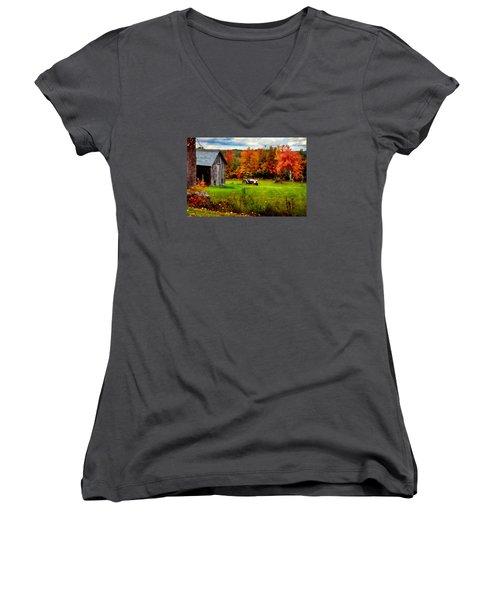 Warner Farm Women's V-Neck T-Shirt (Junior Cut) by Tricia Marchlik