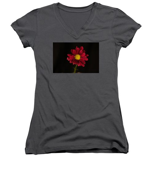 Women's V-Neck T-Shirt (Junior Cut) featuring the photograph Water Drops On A Flower by Jeff Swan
