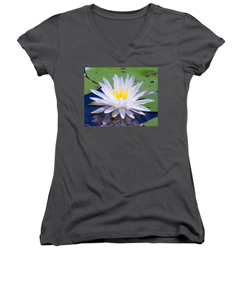Water Lily Women's V-Neck T-Shirt (Junior Cut) by Bill Barber