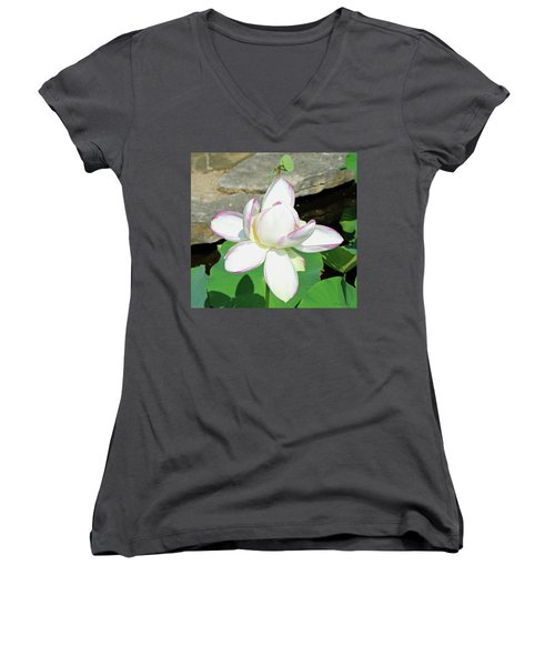 Water Lotus Women's V-Neck T-Shirt (Junior Cut) by Inspirational Photo Creations Audrey Woods