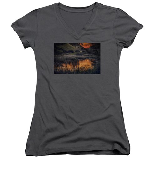 Waterbird Preserve Sunrise Women's V-Neck (Athletic Fit)