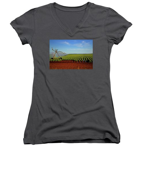 Women's V-Neck T-Shirt (Junior Cut) featuring the photograph Watering The Garden 002 by George Bostian