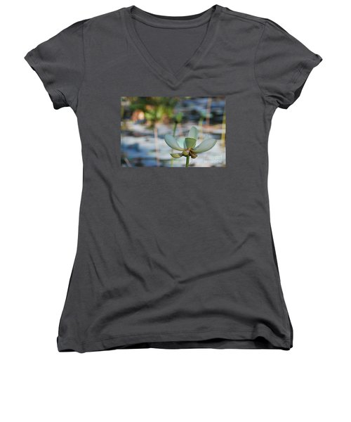 Waterlily Wash Horizontal Women's V-Neck T-Shirt (Junior Cut) by Heather Kirk