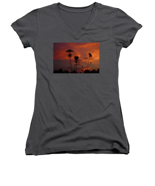 Weeds In The Sunrise Women's V-Neck T-Shirt (Junior Cut) by Kathryn Meyer