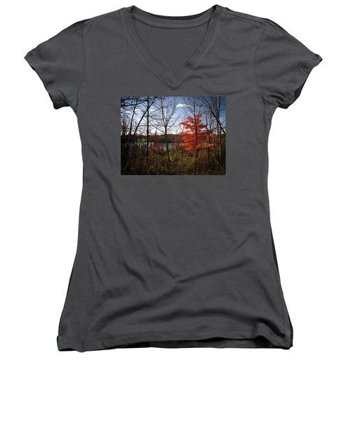 Wehr Wonders Women's V-Neck T-Shirt (Junior Cut) by Kimberly Mackowski