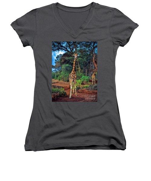 Welcome To Giraffe Manor Women's V-Neck T-Shirt (Junior Cut) by Karen Lewis