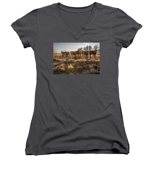 Women's V-Neck T-Shirt (Junior Cut) featuring the photograph Welcoming Committee by Sue Smith