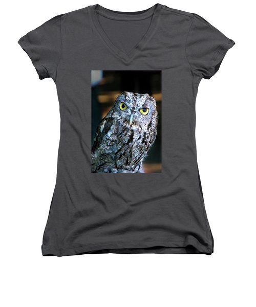 Women's V-Neck T-Shirt (Junior Cut) featuring the photograph Western Screech Owl by Anthony Jones
