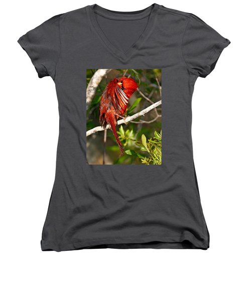 Wet Cardinal Women's V-Neck