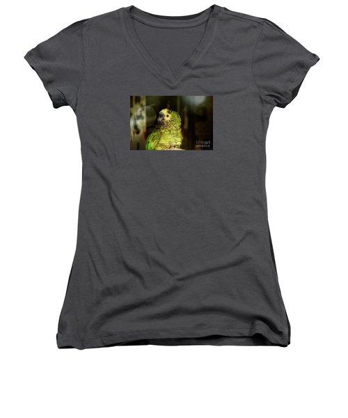 Women's V-Neck T-Shirt (Junior Cut) featuring the photograph Wet Parrot by Melissa Messick