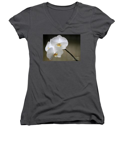 Wet White Orchids Women's V-Neck T-Shirt