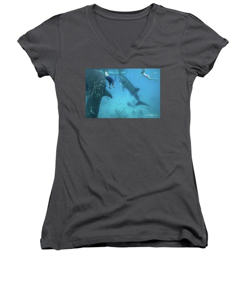 Whale Sharks Women's V-Neck T-Shirt (Junior Cut) by Tim Fitzharris