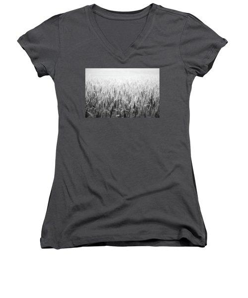 Wheat Field Women's V-Neck T-Shirt (Junior Cut) by Peter Scott