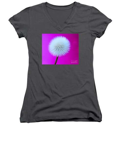 Whimsy Wishes Women's V-Neck (Athletic Fit)