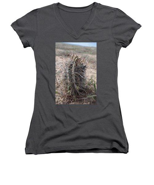 Women's V-Neck T-Shirt (Junior Cut) featuring the photograph Whipple's Fishook Cactus by Jenessa Rahn
