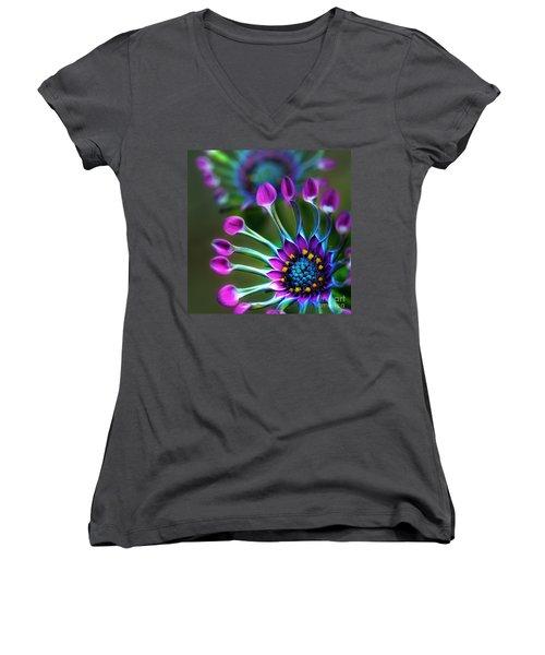 Whirligig Women's V-Neck T-Shirt