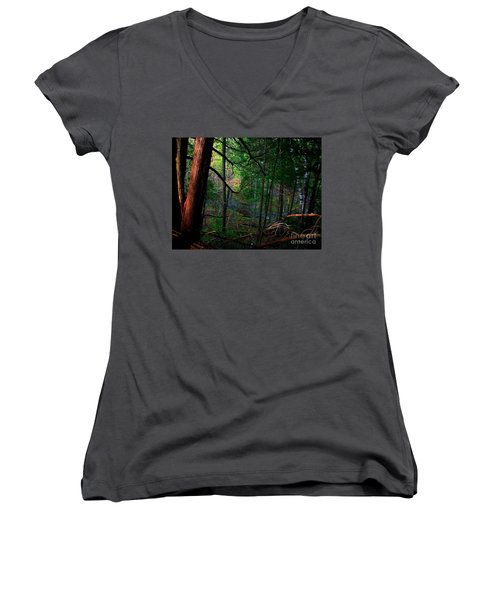 Women's V-Neck T-Shirt (Junior Cut) featuring the photograph Whisperings by Elfriede Fulda