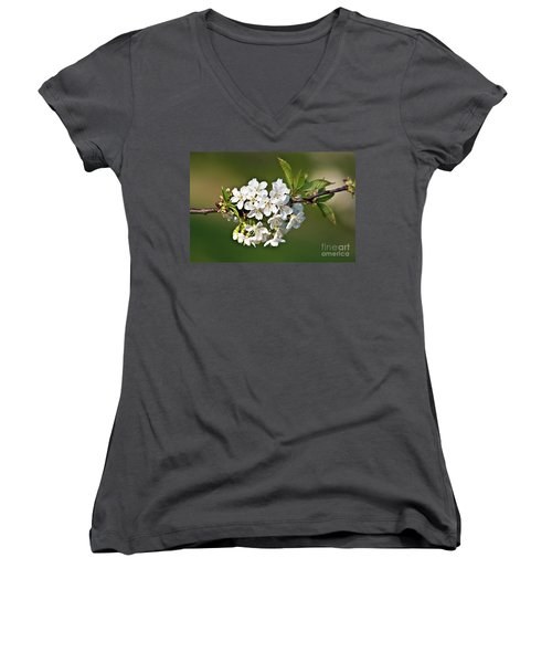 White Apple Blossoms Women's V-Neck