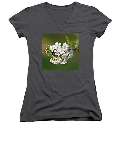 White Apple Blossoms Women's V-Neck (Athletic Fit)