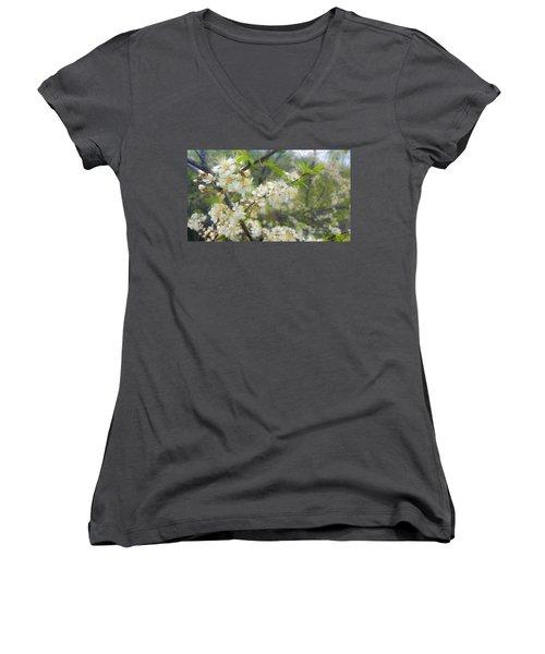 White Blossoms On Fruit Tree Women's V-Neck