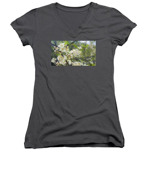 White Blossoms On Fruit Tree Women's V-Neck (Athletic Fit)