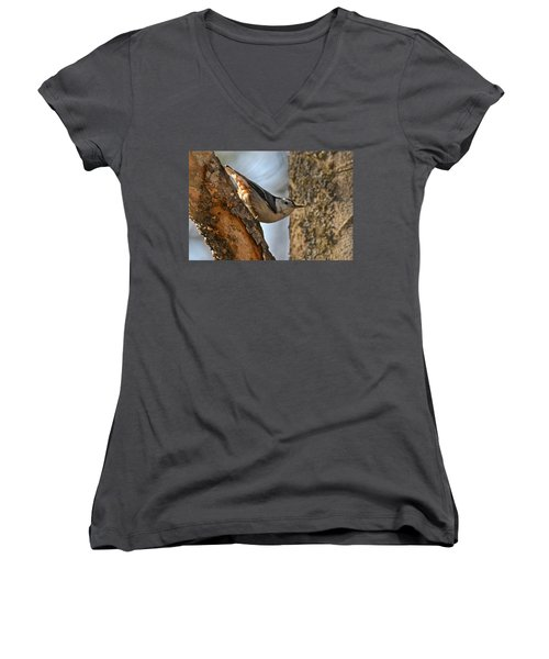 White Breasted Nuthatch 370 Women's V-Neck T-Shirt (Junior Cut) by Michael Peychich