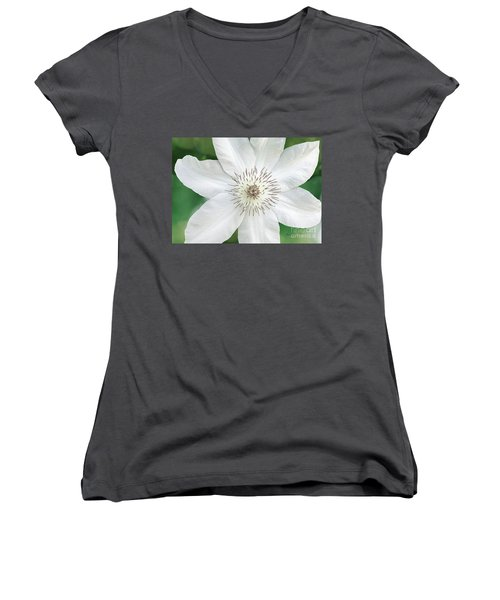 White Clematis Flower Garden 50121 Women's V-Neck (Athletic Fit)