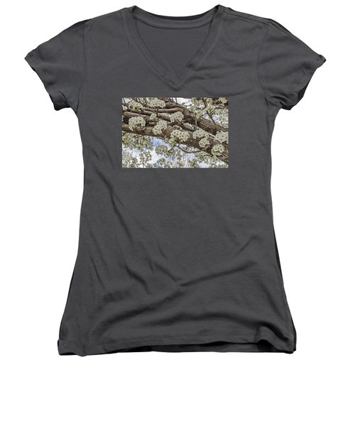 Women's V-Neck T-Shirt (Junior Cut) featuring the photograph White Crabapple Blossoms by Sue Smith