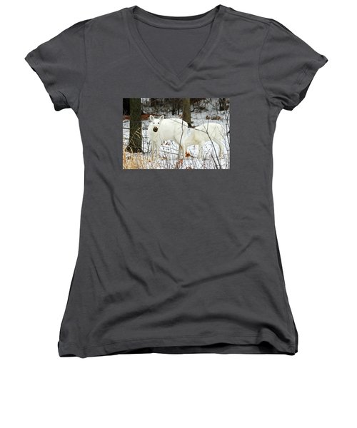 White Deer With Squash 3 Women's V-Neck T-Shirt (Junior Cut) by Brook Burling