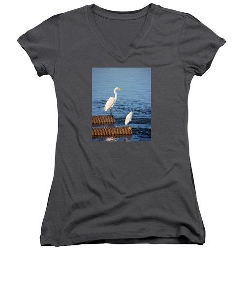 White Egrets Women's V-Neck T-Shirt