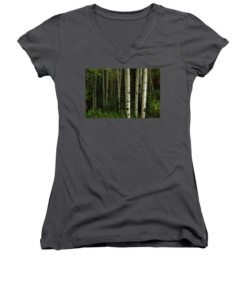 Women's V-Neck T-Shirt featuring the photograph White Forest by James BO Insogna