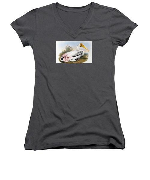 White-headed Ibis, Tantalus Leucocephalus Women's V-Neck T-Shirt