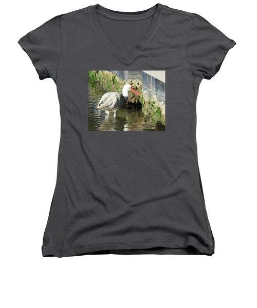White Ibis Headed Home Women's V-Neck T-Shirt