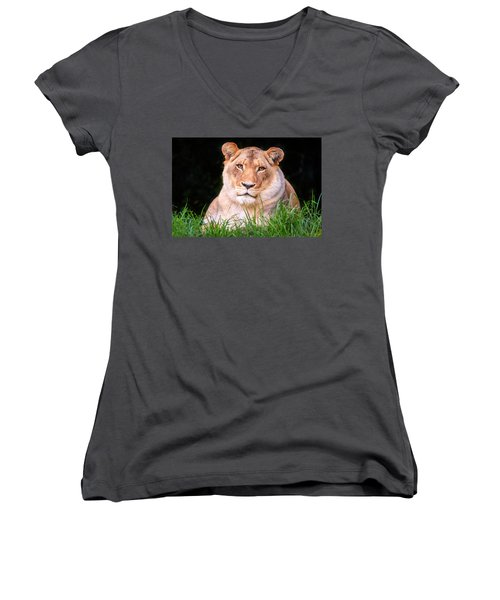 Women's V-Neck T-Shirt (Junior Cut) featuring the photograph White Lion by Alexey Stiop