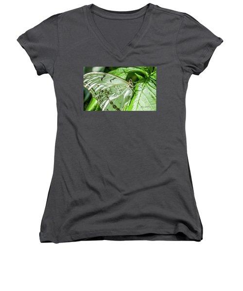 White Morpho Butterfly Women's V-Neck T-Shirt (Junior Cut)