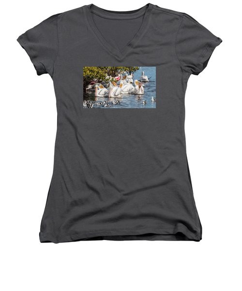 White Pelicans And Others Women's V-Neck