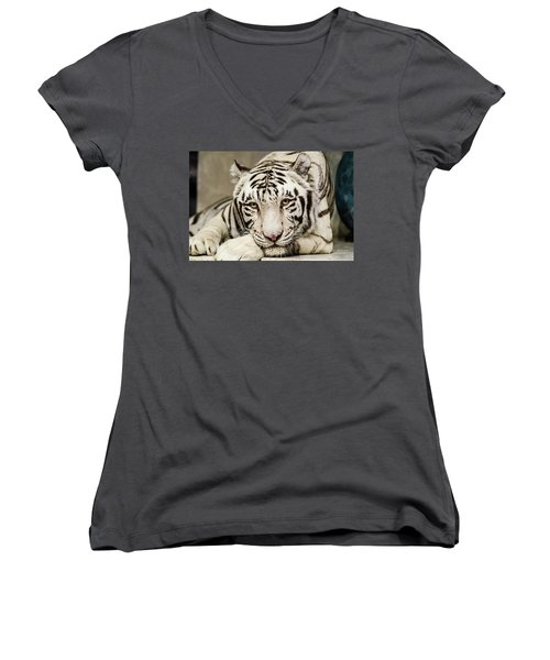 White Tiger Looking At You Women's V-Neck T-Shirt