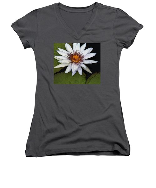 White Water Lily Women's V-Neck T-Shirt (Junior Cut) by Yvonne Wright