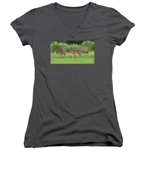 Whitetail Deer Gathering Women's V-Neck T-Shirt (Junior Cut) by Myrna Bradshaw