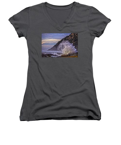 Whitewash Women's V-Neck T-Shirt (Junior Cut) by Billie-Jo Miller