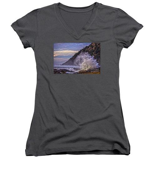 Whitewash Women's V-Neck T-Shirt