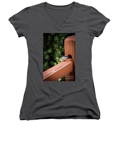 Who's In There? Women's V-Neck T-Shirt (Junior Cut) by Deborah Klubertanz